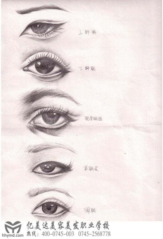 手绘画眼睛比眉毛更难一些,这是丁玉婷课余时间画的各种眼型素描图片